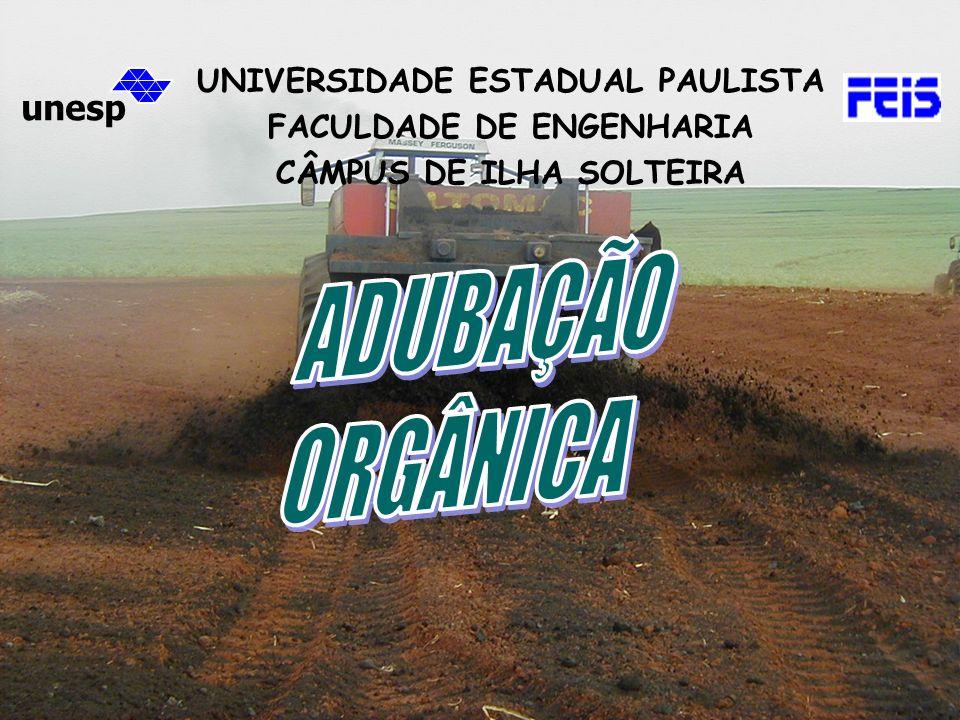 unesp UNIVERSIDADE ESTADUAL PAULISTA FACULDADE DE ENGENHARIA CÂMPUS DE ILHA SOLTEIRA