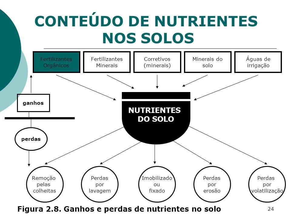 24 NUTRIENTES DO SOLO Fertilizantes Orgânicos Fertilizantes Minerais Corretivos (minerais) Minerais do solo Águas de irrigação Remoção pelas colheitas