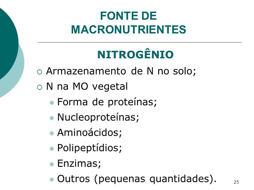 25 NITROGÊNIO Armazenamento de N no solo; N na MO vegetal Forma de proteínas; Nucleoproteínas; Aminoácidos; Polipeptídios; Enzimas; Outros (pequenas q