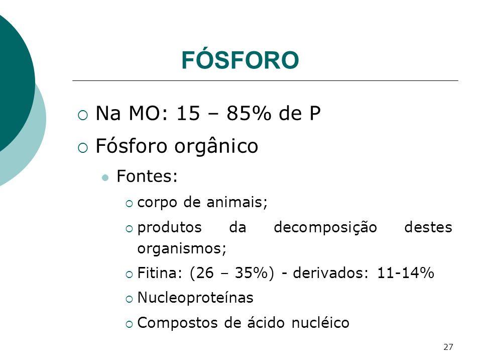 27 FÓSFORO Na MO: 15 – 85% de P Fósforo orgânico Fontes: corpo de animais; produtos da decomposição destes organismos; Fitina: (26 – 35%) - derivados: