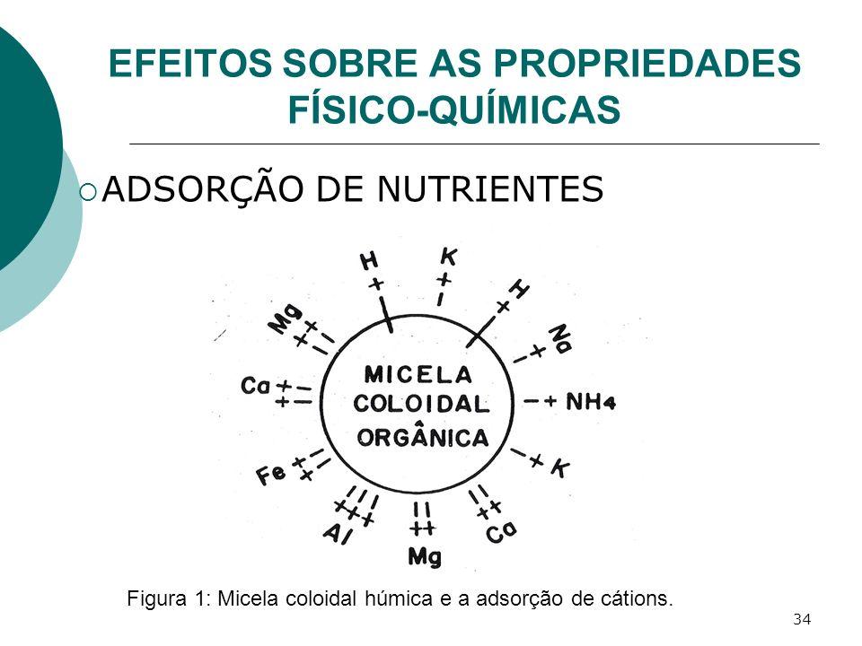 34 EFEITOS SOBRE AS PROPRIEDADES FÍSICO-QUÍMICAS ADSORÇÃO DE NUTRIENTES Figura 1: Micela coloidal húmica e a adsorção de cátions.