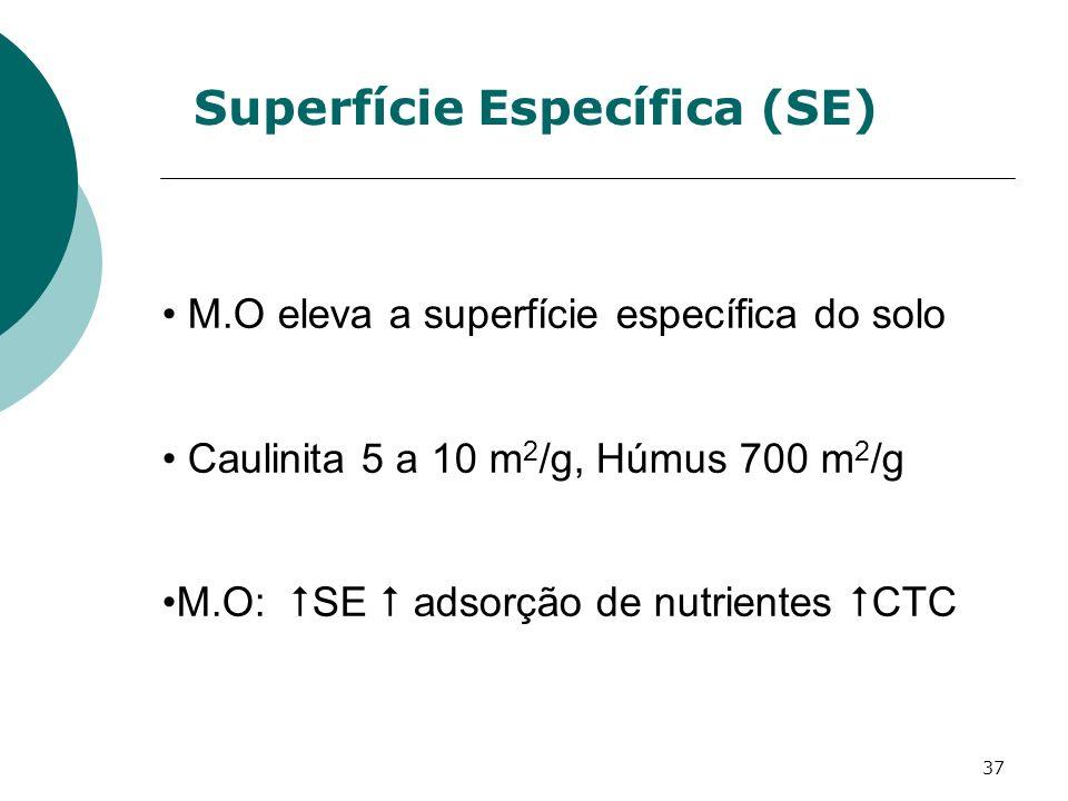 37 Superfície Específica (SE) M.O eleva a superfície específica do solo Caulinita 5 a 10 m 2 /g, Húmus 700 m 2 /g M.O: SE adsorção de nutrientes CTC