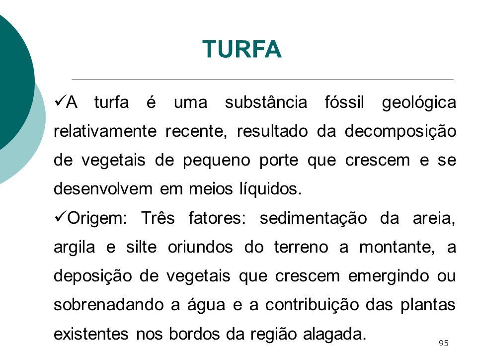 95 A turfa é uma substância fóssil geológica relativamente recente, resultado da decomposição de vegetais de pequeno porte que crescem e se desenvolve