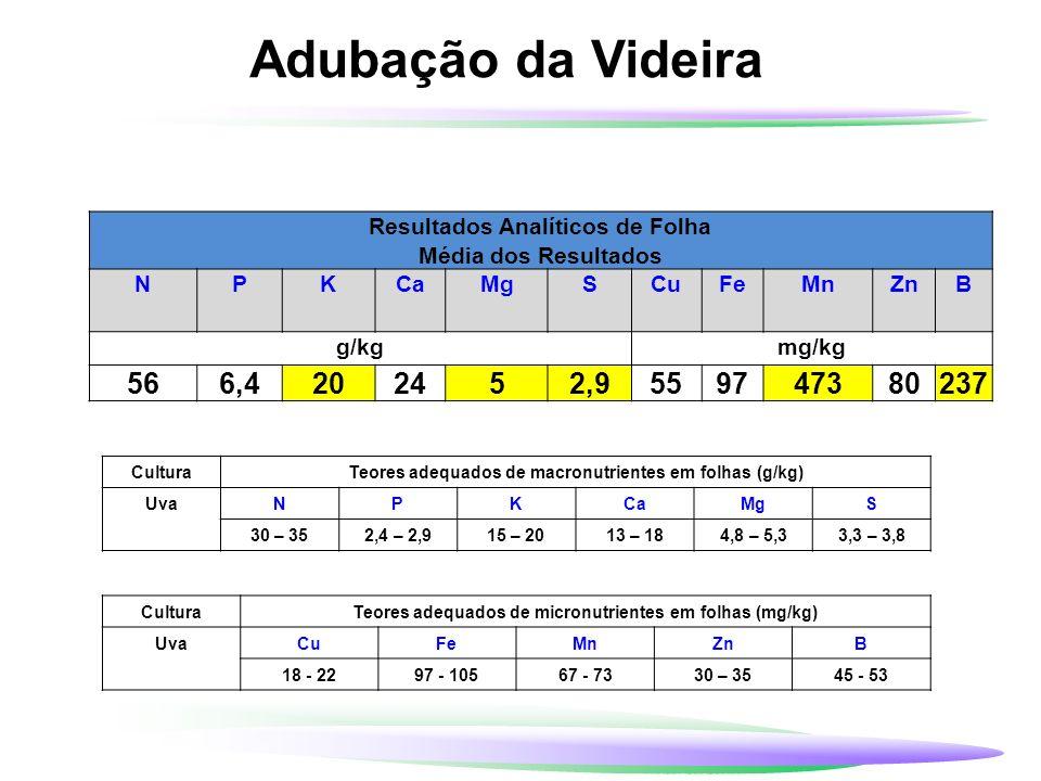 Adubação da Videira Uma tonelada de uvas finas (UF) e uvas comuns (UC) colhidas removem: UF - 2,2 kg N 1,4 kg P 2 O 5 4,0 kg K 2 O UC - 0,9 kg N 0,7 kg P 2 O 5 2,3 kg K 2 O