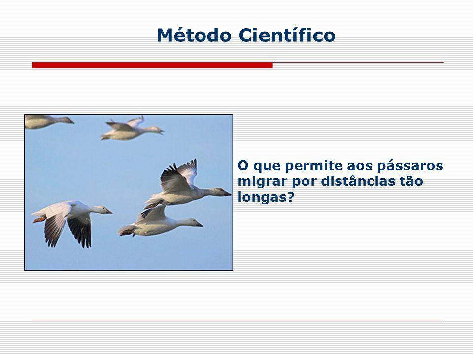 O que permite aos pássaros migrar por distâncias tão longas? Método Científico