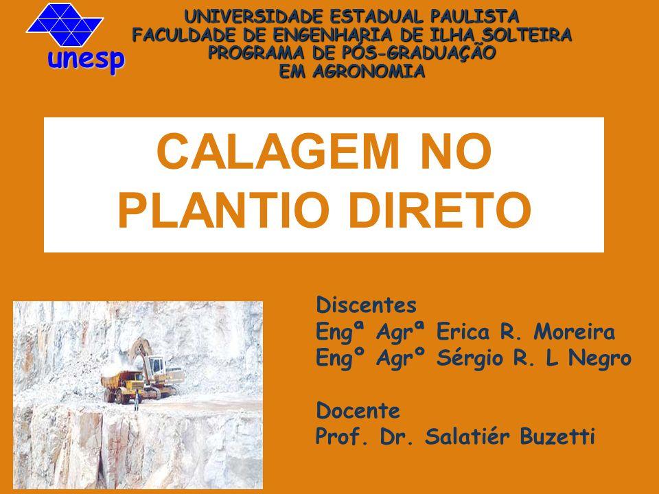 CALAGEM NO PLANTIO DIRETO Discentes Engª Agrª Erica R. Moreira Engº Agrº Sérgio R. L Negro Docente Prof. Dr. Salatiér Buzetti UNIVERSIDADE ESTADUAL PA