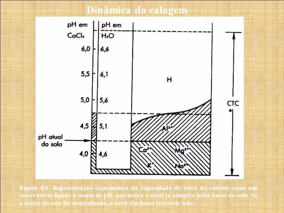 Dinâmica da calagem Figura 8.6. Representação esquemática da capacidade de troca de cátions como um reservatório ligado à escala de pH, que indica o n