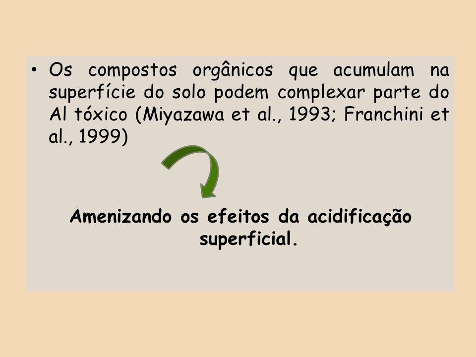 Os compostos orgânicos que acumulam na superfície do solo podem complexar parte do Al tóxico (Miyazawa et al., 1993; Franchini et al., 1999) Amenizand