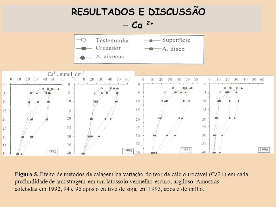 RESULTADOS E DISCUSSÃO – Ca 2+ Figura 5. Efeito de métodos de calagem na variação do teor de cálcio trocável (Ca2+) em cada profundidade de amostragem