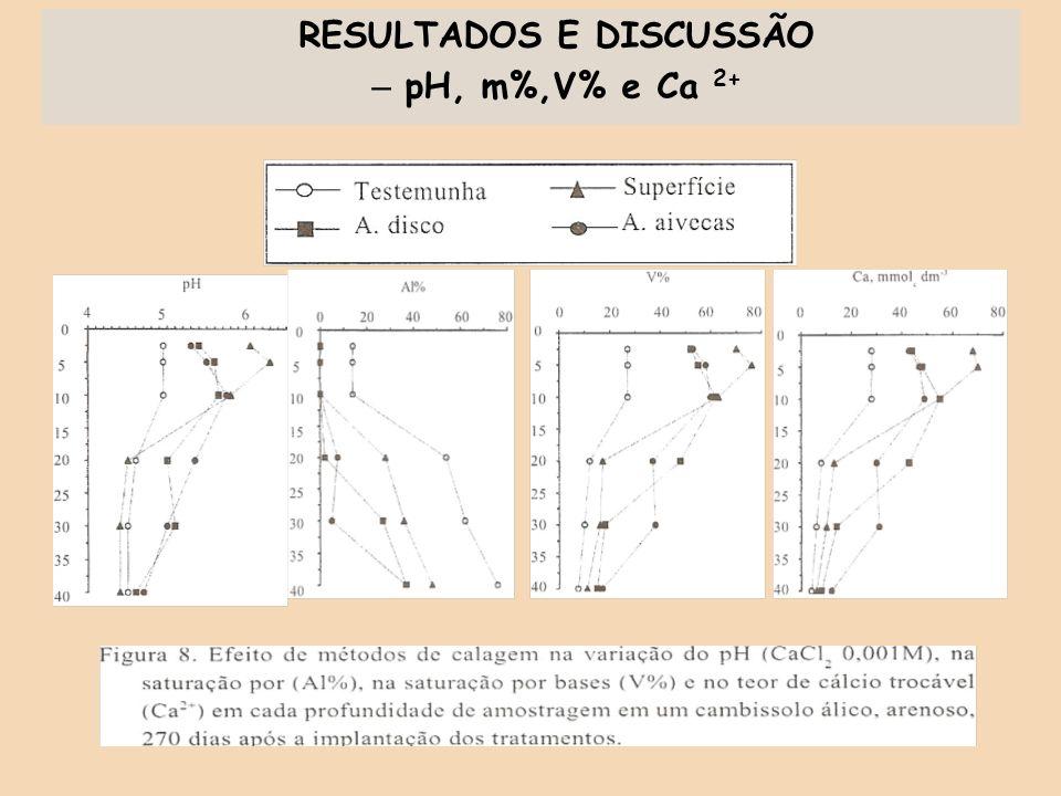 RESULTADOS E DISCUSSÃO – pH, m%,V% e Ca 2+
