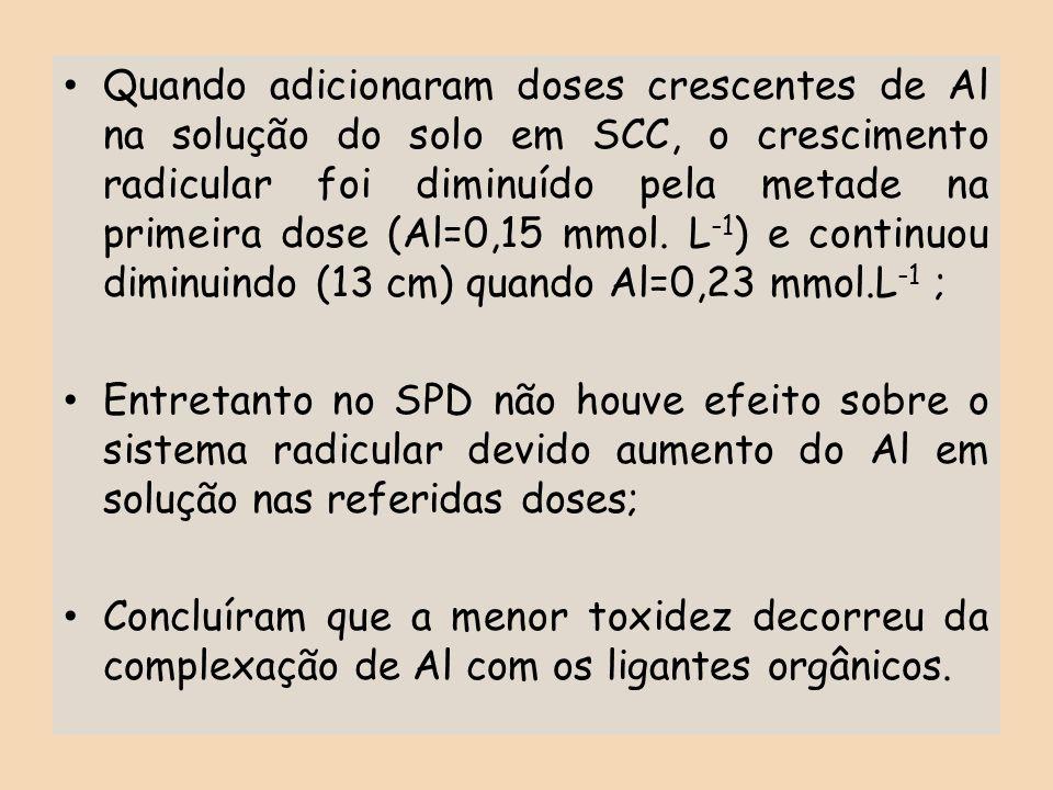 Quando adicionaram doses crescentes de Al na solução do solo em SCC, o crescimento radicular foi diminuído pela metade na primeira dose (Al=0,15 mmol.