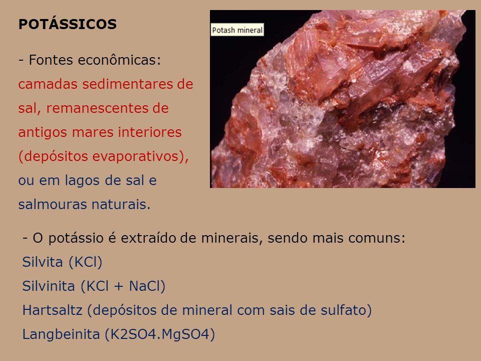 POTÁSSICOS - Fontes econômicas: camadas sedimentares de sal, remanescentes de antigos mares interiores (depósitos evaporativos), ou em lagos de sal e