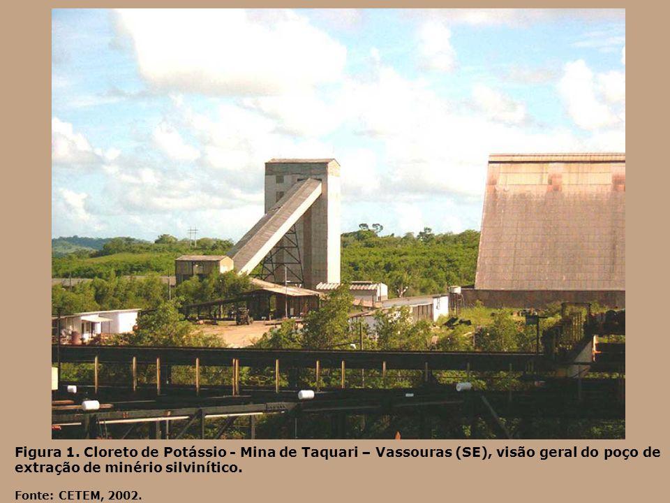 Figura 1. Cloreto de Potássio - Mina de Taquari – Vassouras (SE), visão geral do poço de extração de minério silvinítico. Fonte: CETEM, 2002.