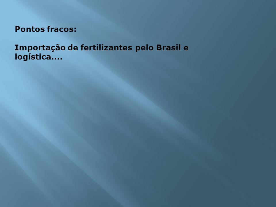 Pontos fracos: Importação de fertilizantes pelo Brasil e logística....