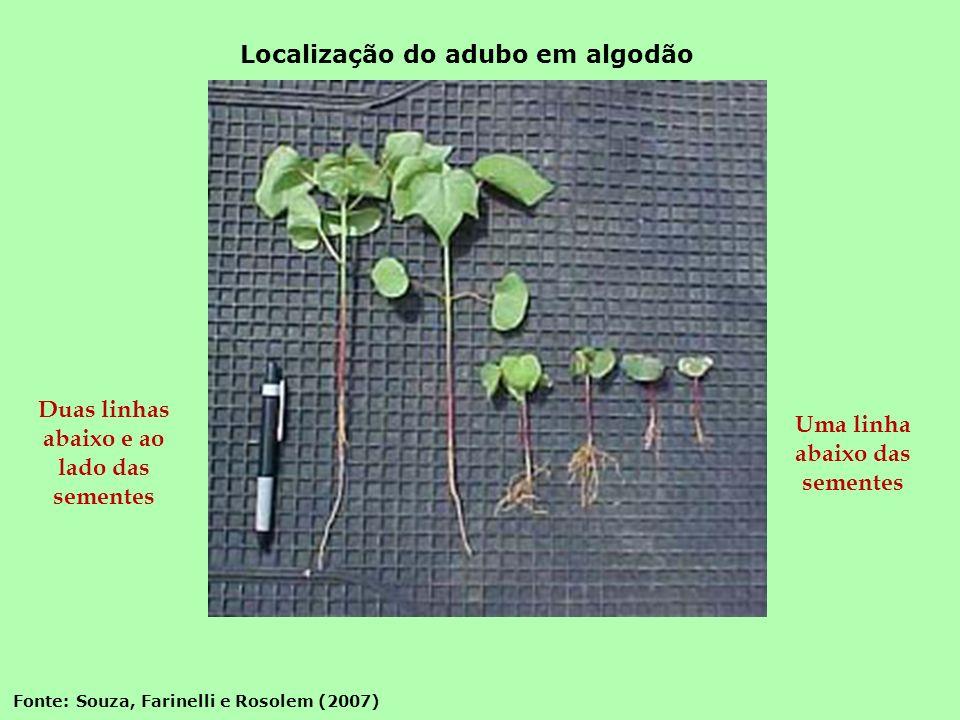 Duas linhas abaixo e ao lado das sementes Uma linha abaixo das sementes Fonte: Souza, Farinelli e Rosolem (2007) Localização do adubo em algodão