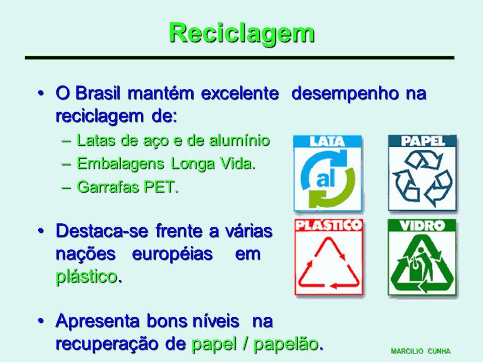 Reciclagem O Brasil mantém excelente desempenho na reciclagem de:O Brasil mantém excelente desempenho na reciclagem de: –Latas de aço e de alumínio –E