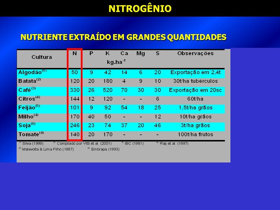 NITROGÊNIO NUTRIENTE EXTRAÍDO EM GRANDES QUANTIDADES