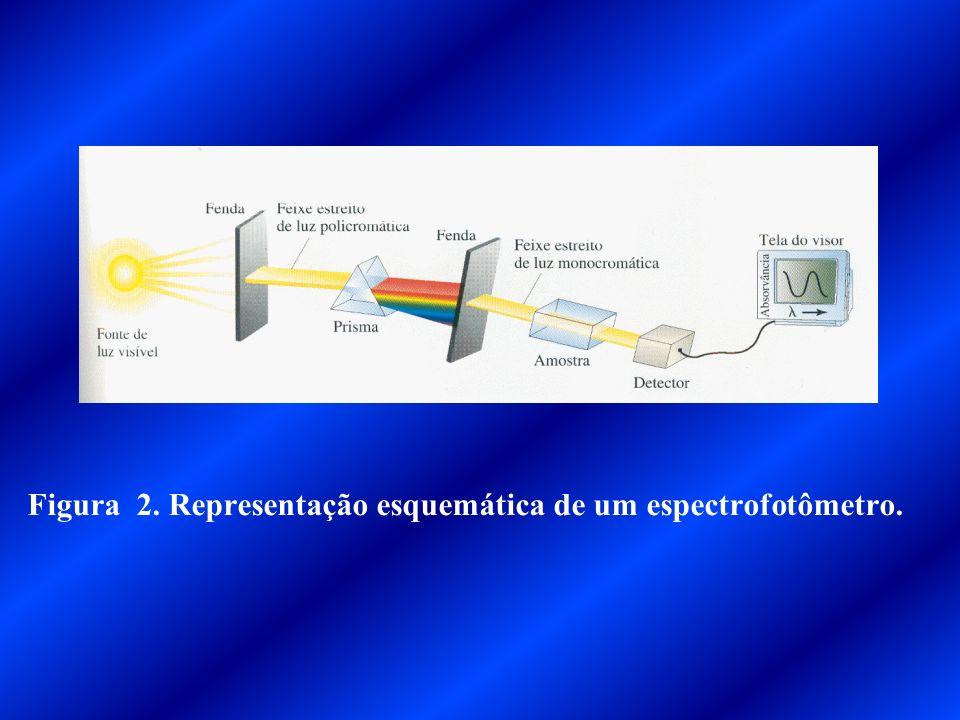 LEDS RECEPTOR AMPLIFICADOR CONVERSOR A/D PROCESSADOR MEMÓRIA VISOR