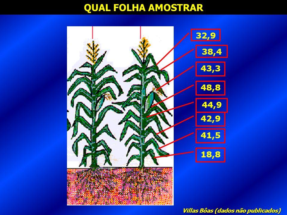 QUAL FOLHA AMOSTRAR 32,9 38,4 48,8 18,8 41,5 42,9 44,9 43,3 Villas Bôas (dados não publicados)