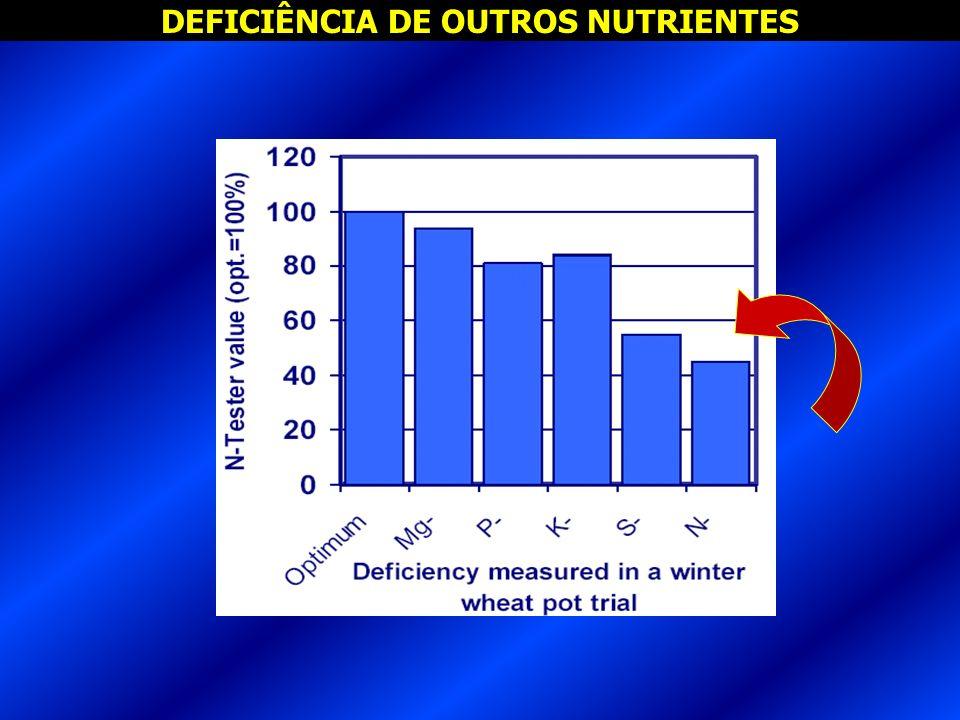 DEFICIÊNCIA DE OUTROS NUTRIENTES