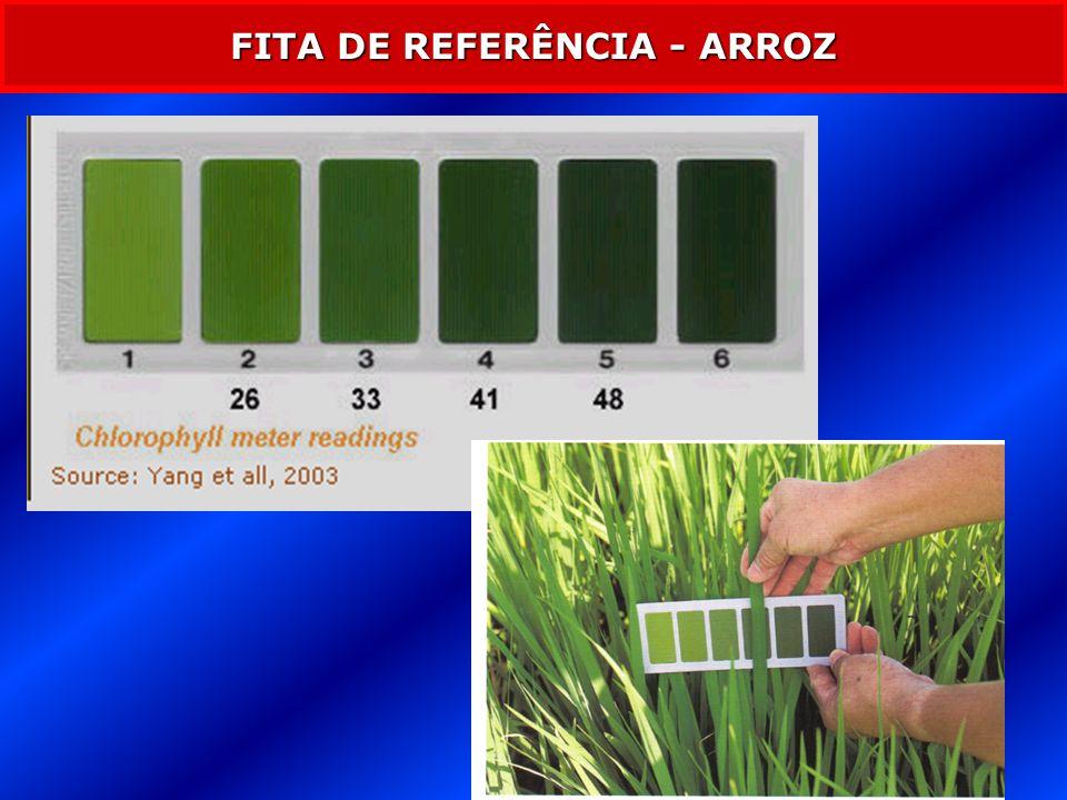 RESPOSTA DA PLANTA DIAGNOSE VISUAL AFETOU A PRODUTIVIDADE - CLOROFILÔMETRO - DETECTAR A REDUÇÃO NA COLORAÇÃO VERDE DAS FOLHAS ANTES DE SE TORNAREM CLORÓTICAS > N INSUF.