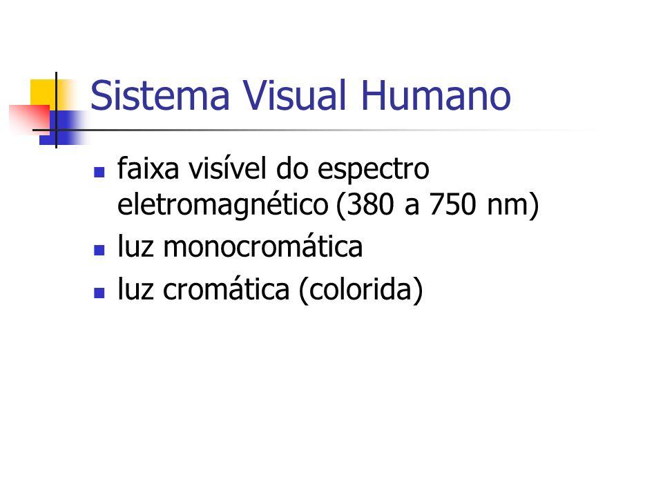 Sistema Visual Humano faixa visível do espectro eletromagnético (380 a 750 nm) luz monocromática luz cromática (colorida)