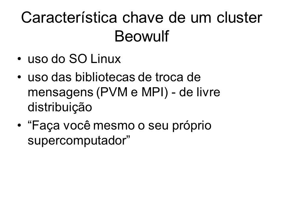 Característica chave de um cluster Beowulf uso do SO Linux uso das bibliotecas de troca de mensagens (PVM e MPI) - de livre distribuição Faça você mes