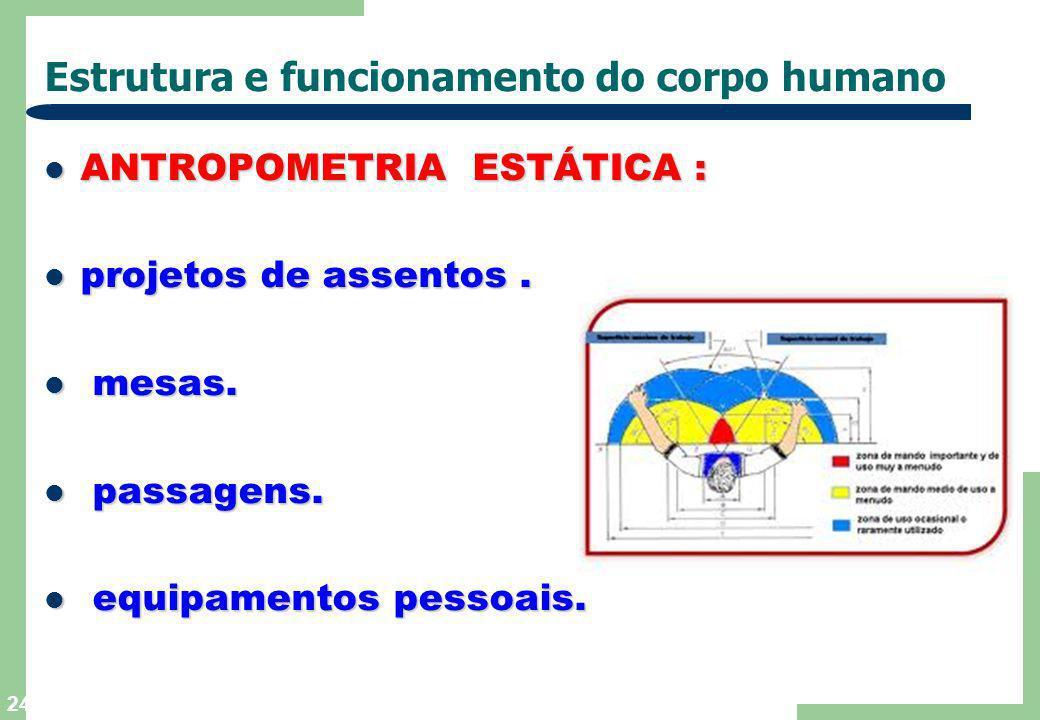 23 Estrutura e funcionamento do corpo humano ANTROPOMETRIA ESTÁTICA : está relacionada com as dimensões físicas do está relacionada com as dimensões f