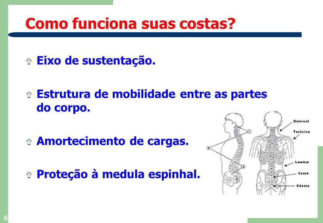 5 ñ Organização do Trabalho Pesado. ñ Biomecânica Aplicada ao Trabalho. ñ Adequação Ergonômica Geral do Posto de Trabalho. ñ Prevenção da Fadiga. ñ Pr