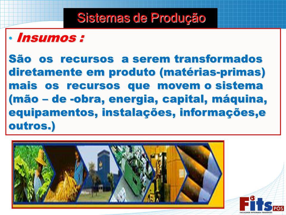 Insumos : Insumos : São os recursos a serem transformados diretamente em produto (matérias-primas) mais os recursos que movem o sistema (mão – de -obr
