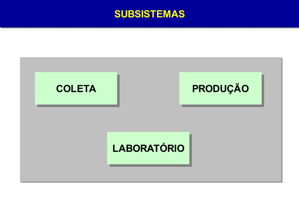 SUBSISTEMA LABORATÓRIO Responsável pela realização de exames de sorologia e imunohematologia AMOSTRA EXTERNA SOROLOGIA IMUNOHEMATOLOGIA MÓDULOS