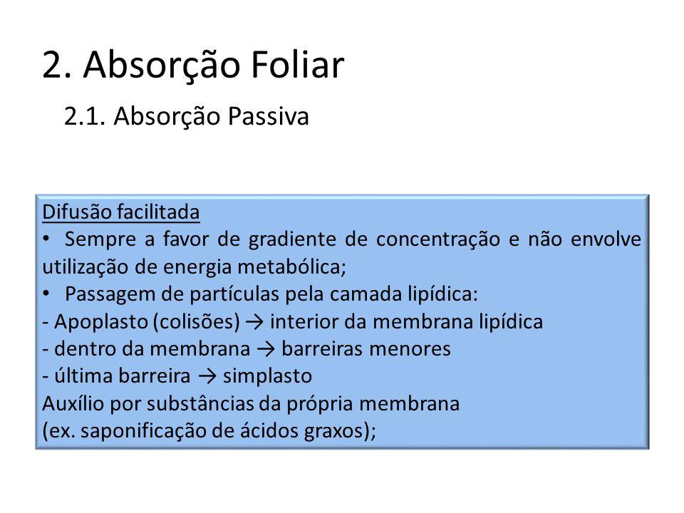 2. Absorção Foliar 2.1. Absorção Passiva Difusão facilitada Sempre a favor de gradiente de concentração e não envolve utilização de energia metabólica
