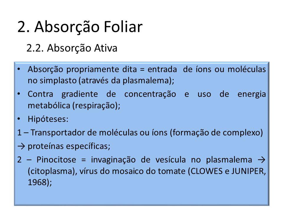 2. Absorção Foliar Absorção propriamente dita = entrada de íons ou moléculas no simplasto (através da plasmalema); Contra gradiente de concentração e