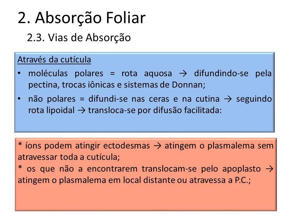 2. Absorção Foliar Através da cutícula moléculas polares = rota aquosa difundindo-se pela pectina, trocas iônicas e sistemas de Donnan; não polares =