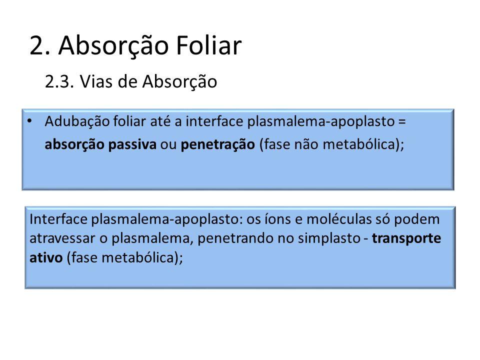 2. Absorção Foliar Adubação foliar até a interface plasmalema-apoplasto = absorção passiva ou penetração (fase não metabólica); 2.3. Vias de Absorção