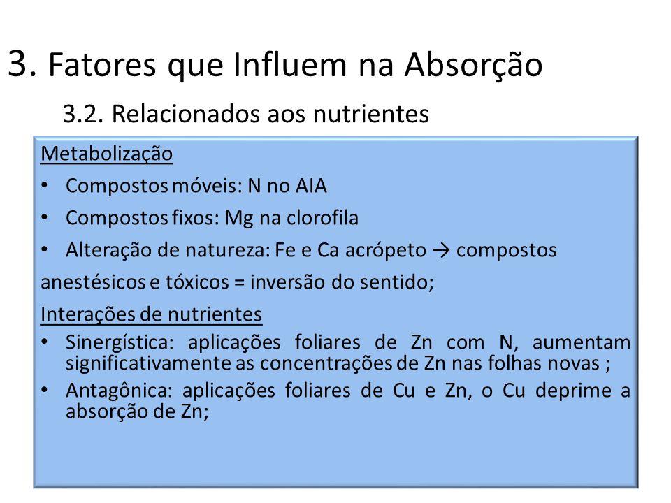 3. Fatores que Influem na Absorção Metabolização Compostos móveis: N no AIA Compostos fixos: Mg na clorofila Alteração de natureza: Fe e Ca acrópeto c