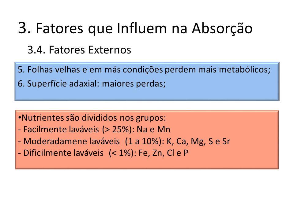 3. Fatores que Influem na Absorção 5. Folhas velhas e em más condições perdem mais metabólicos; 6. Superfície adaxial: maiores perdas; 3.4. Fatores Ex