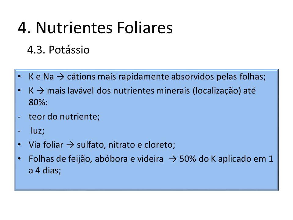 4. Nutrientes Foliares K e Na cátions mais rapidamente absorvidos pelas folhas; K mais lavável dos nutrientes minerais (localização) até 80%: -teor do