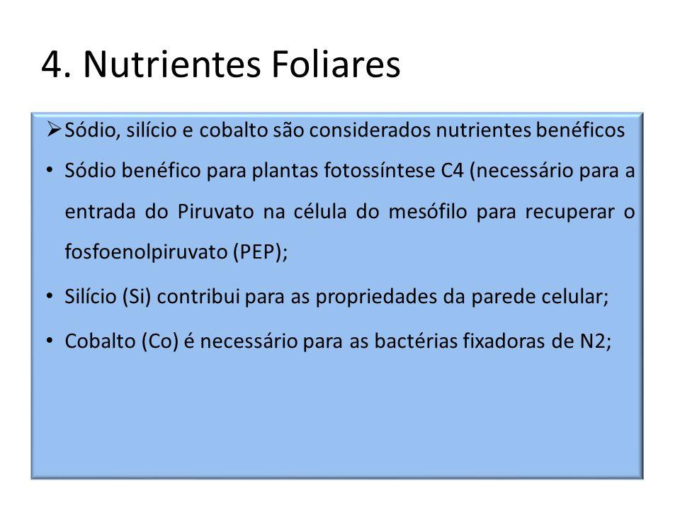 4. Nutrientes Foliares Sódio, silício e cobalto são considerados nutrientes benéficos Sódio benéfico para plantas fotossíntese C4 (necessário para a e