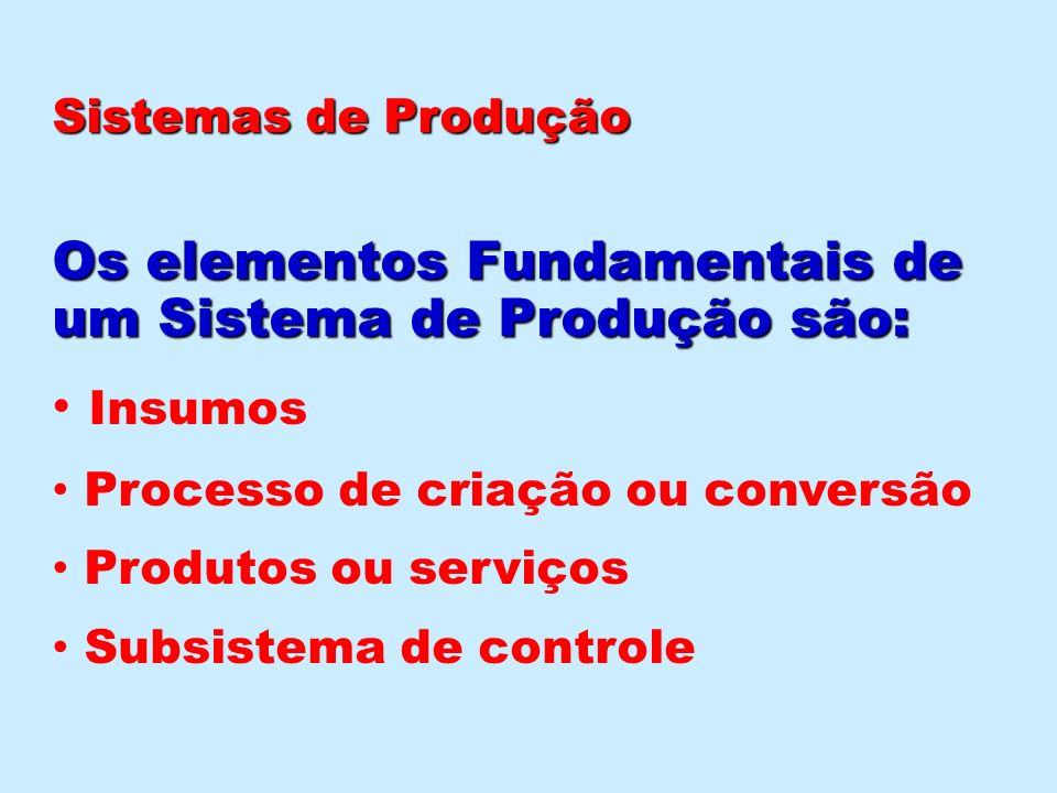 Insumos : Insumos : São os recursos a serem transformados diretamente em produto (matérias-primas) mais os recursos que movem o sistema (mão – de -obra, energia, capital, máquina, equipamentos, instalações, informações,e outros.) Sistemas de Produção Sistemas de Produção