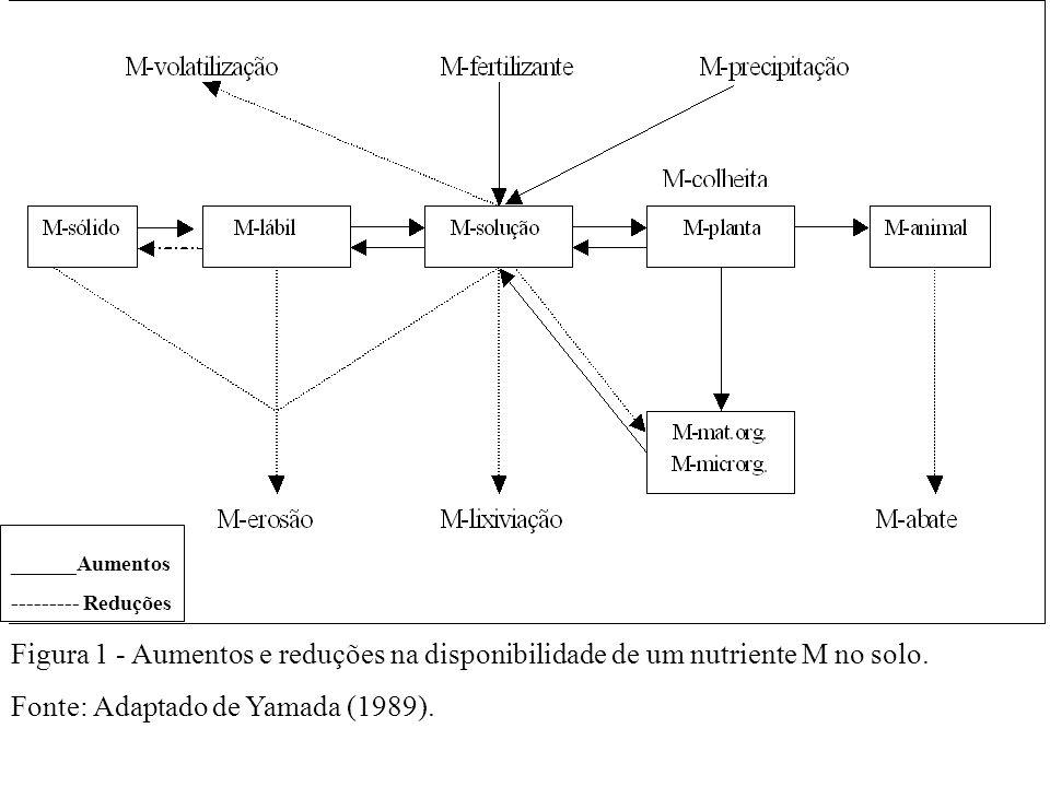 Figura 1 - Aumentos e reduções na disponibilidade de um nutriente M no solo. Fonte: Adaptado de Yamada (1989). ______Aumentos --------- Reduções