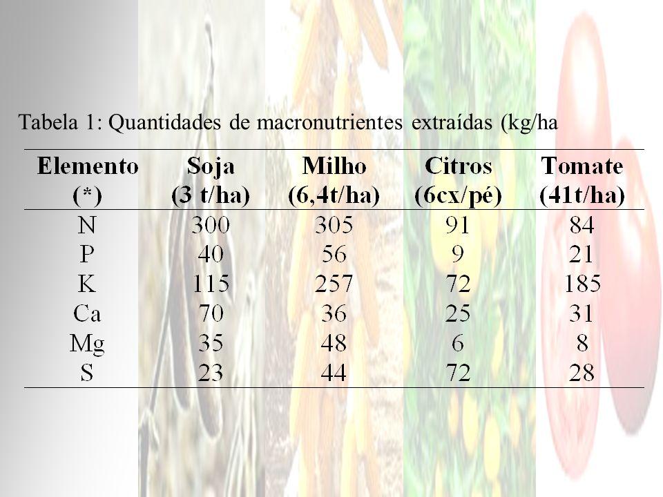 Tabela 1: Quantidades de macronutrientes extraídas (kg/ha