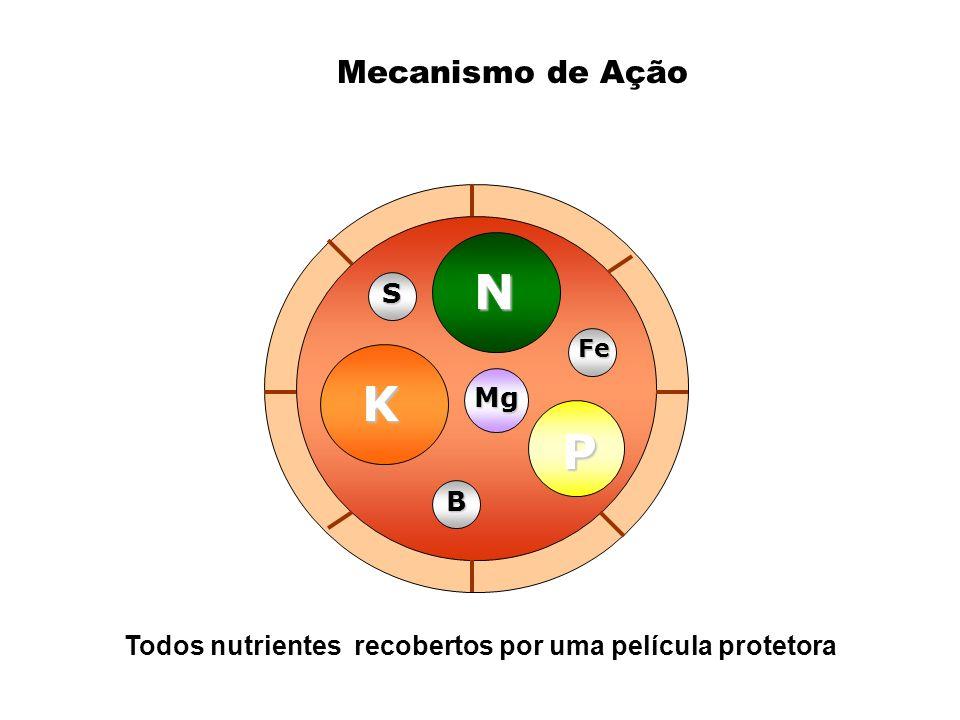 Mecanismo de Ação K N P Mg B Fe S Todos nutrientes recobertos por uma película protetora