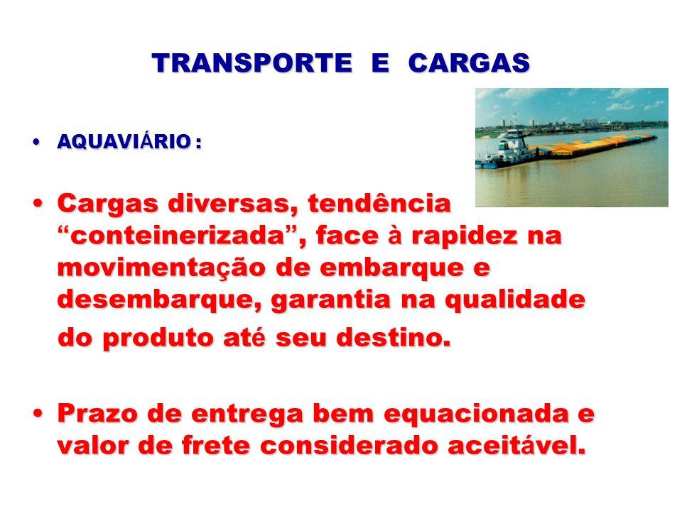 TRANSPORTE E CARGAS AQUAVI Á RIO :AQUAVI Á RIO : Cargas diversas, tendência conteinerizada, face à rapidez na movimenta ç ão de embarque e desembarque