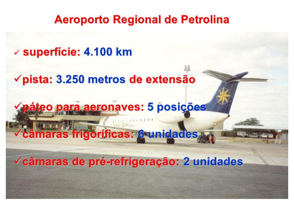 superfície: 4.100 km superfície: 4.100 km pista: 3.250 metros de extensão pista: 3.250 metros de extensão páteo para aeronaves: 5 posições páteo para