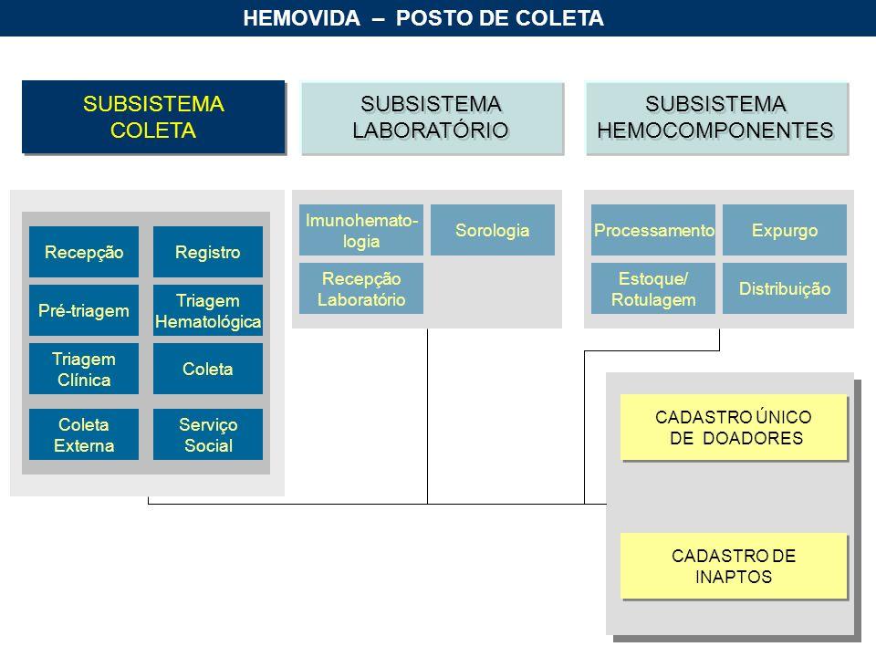 HEMOVIDA – POSTO DE COLETA SUBSISTEMA COLETA SUBSISTEMA COLETA SUBSISTEMA HEMOCOMPONENTES SUBSISTEMA HEMOCOMPONENTES SUBSISTEMA LABORATÓRIO SUBSISTEMA LABORATÓRIO RecepçãoRegistro Pré-triagem Triagem Hematológica Triagem Clínica Coleta Externa Serviço Social Processamento Estoque/ Rotulagem Distribuição Expurgo Imunohemato- logia Recepção Laboratório Sorologia CADASTRO ÚNICO DE DOADORES CADASTRO ÚNICO DE DOADORES CADASTRO DE INAPTOS CADASTRO DE INAPTOS