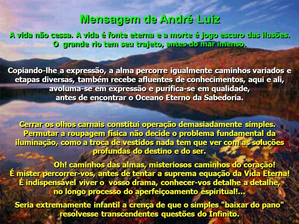 Mensagem de André Luiz A vida não cessa. A vida é fonte eterna e a morte é jogo escuro das ilusões. O grande rio tem seu trajeto, antes do mar imenso.