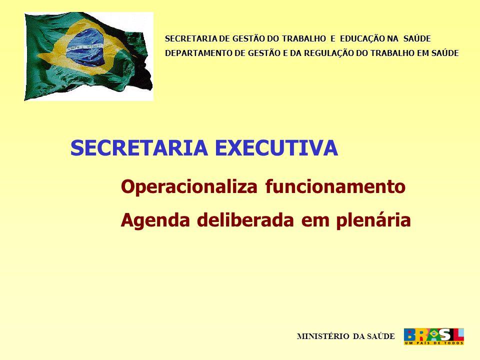 SECRETARIA DE GESTÃO DO TRABALHO E EDUCAÇÃO NA SAÚDE DEPARTAMENTO DE GESTÃO E DA REGULAÇÃO DO TRABALHO EM SAÚDE MINISTÉRIO DA SAÚDE SECRETARIA EXECUTIVA Operacionaliza funcionamento Agenda deliberada em plenária