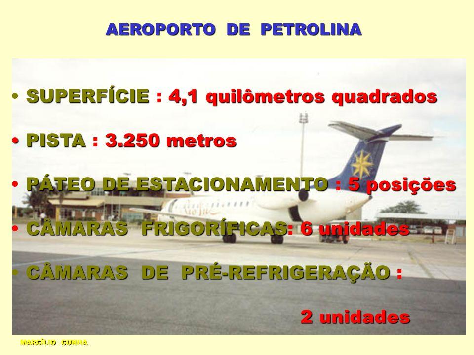 AEROPORTO DE PETROLINA MARCÍLIO CUNHA SUPERFÍCIE4,1 quilômetros quadrados SUPERFÍCIE : 4,1 quilômetros quadrados PISTA3.250 metros PISTA : 3.250 metro