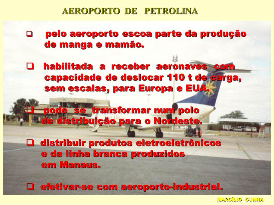 AEROPORTO DE PETROLINA MARCÍLIO CUNHA pelo aeroporto escoa parte da produção pelo aeroporto escoa parte da produção de manga e mamão.